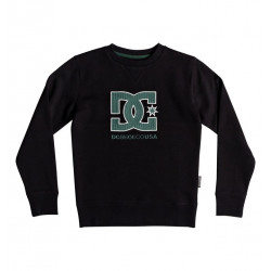 Sweatshirt Junior Glenridge DC