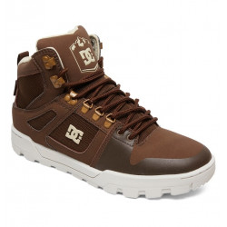 Chaussures Homme PURE HIGH TOP WR DC