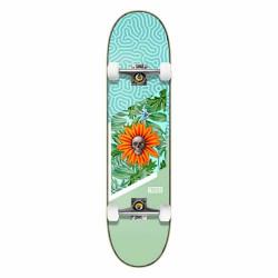 "Skateboard GARDEN 8"" Tricks"