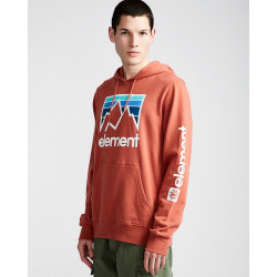 Sweat Capuche Homme JOINT HO Element