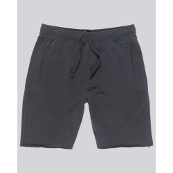 Short Homme CORNELL FT Element