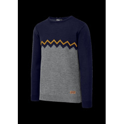 Pull Homme KNITTER Picture