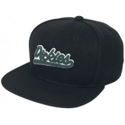 Casquette Payneville Dickies