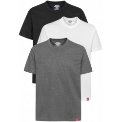 T Shirt Homme ( lot de 3) couleur assorties Dickies