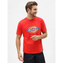 T Shirt Homme Horseshoe Dickies