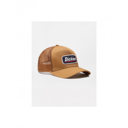 Casquette canionneur Bricelyn Dickies