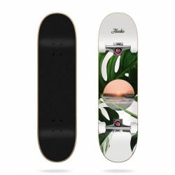 Skateboard Coast 7.6″ Aloiki