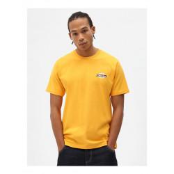 T Shirt Homme Ruston Dickies