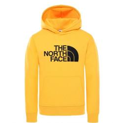Sweat Capuche Homme DREW PEAK The North Face