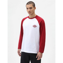 T-shirt Homme manches longues COLOGNE Dickies